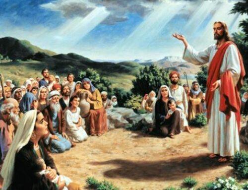 La testimonianza dei cristiani